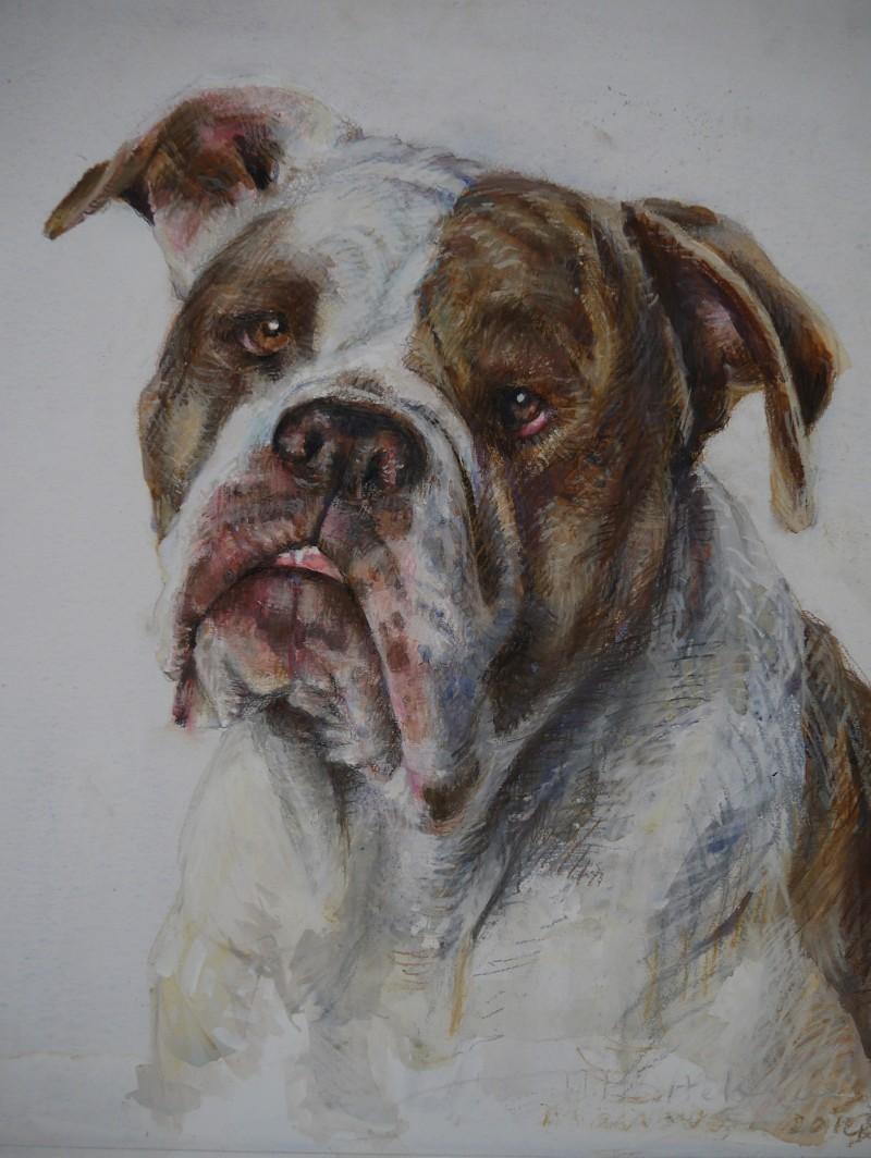 hondenportret gemengde techniek