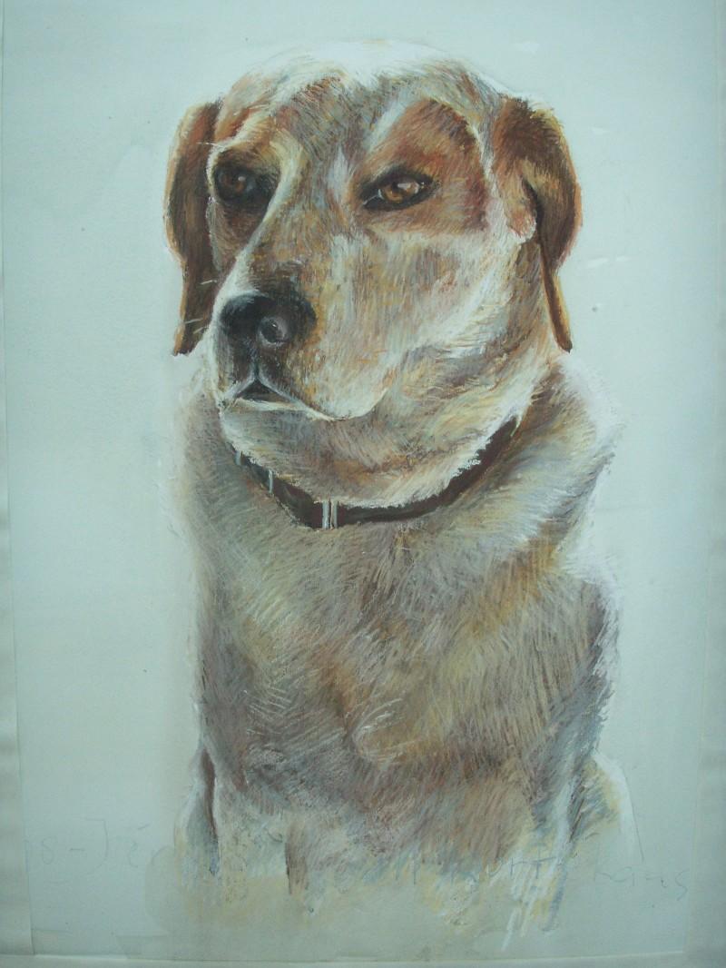 hondenportret tekening