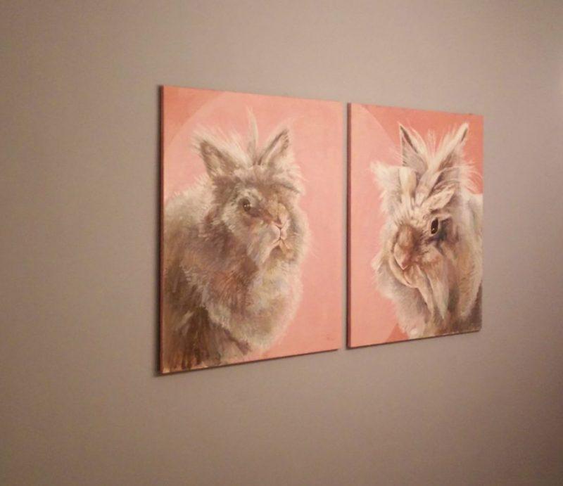 portret angora konijnen